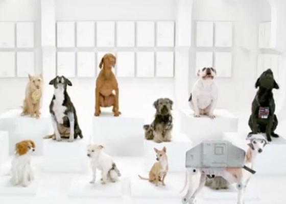 Acima, releitura de Star Wars com cães da Volkswagen - Reprodução